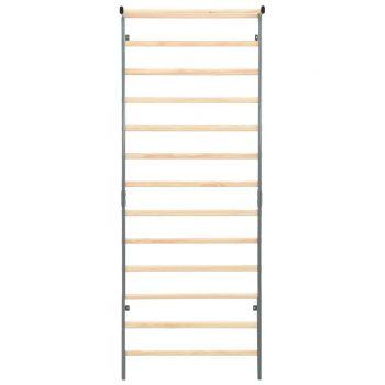 Gimnastičke ljestve za penjanje unutarnje/vanjske 90x30x236 cm